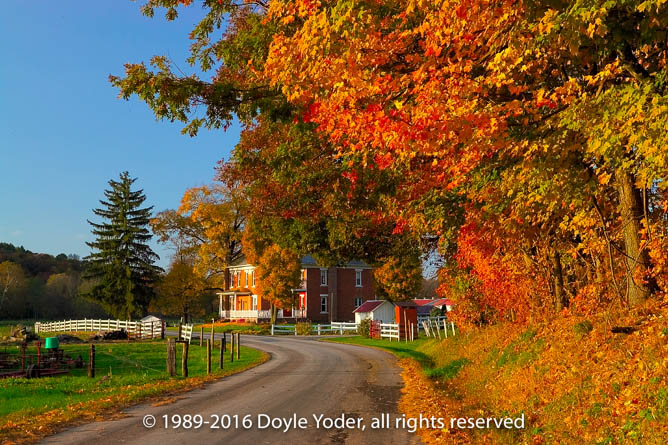 Doyle Yoder Photography