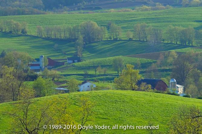 Doyle Yoder Photography
